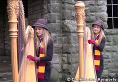 Watch the Harp Twins Video for Their Version of Hedwig's Theme