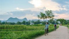 While the frenetic streets of Hanoi and Ho Chi Minh City offer a unique insight into Vietnam's urban life, it's not until you've ridden through the serene – and surreal – surrounds of Mai Chau that you get to know the real Vietnam. The post 4 things we love about cycling in Vietnam's Mai Chau valley appeared first on Intrepid Travel Blog.