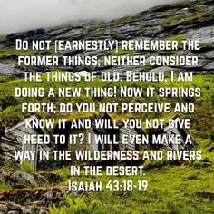 Do not [earnestly] remember the former things; neither consider the things of old.Behold, I am doing a new thing! Now it springs forth; do you not perceive and know it and will you not give heed to it? I will even make a way in the wilderness and rivers in the desert. (‭Isaiah‬ ‭43‬:‭18-19‬ AMP)Have a blessed day n Jesus Christ..May God bless you abundantly..