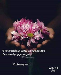 Good Night, Good Morning, Night Pictures, Nighty Night, Buen Dia, Bonjour, Good Night Wishes, Good Morning Wishes