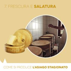Aged PDO Asiago: how it is made. Cooling and Salting.