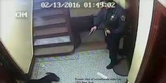 Justice for Spike the friendly dog: fire NYPD policeman who shot him ...