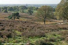 Mookerheide, noord Limburg