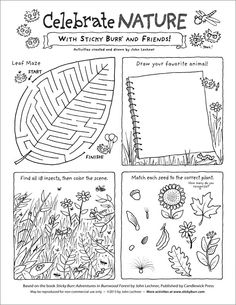 ... Activities for Kids on Pinterest | Maze, Forests and Nature Activities