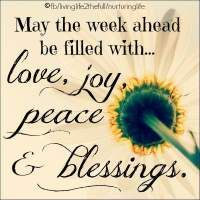May the week ahead be filled with love, joy, peace & blessings Monday Blessings, Morning Blessings, Good Morning Texts, Good Morning Quotes, Gd Morning, Morning Pics, Morning Messages, Monday Quotes, Life Quotes