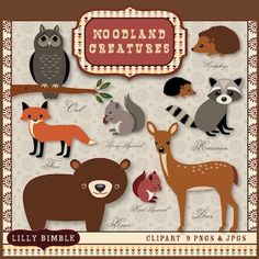 woodland animals clip art   Clipart /Woodland Creatures These are my favorites of the clipart I found....what do you think?