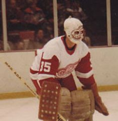 This week's AGM is a guy people all know very well in many hockey circles, yet don't really remembered that he played in the NHL. Ice Hockey Rink, Hockey Goalie, Hockey Memes, Hockey Logos, Rangers Hockey, Goalie Mask, Masked Man, Sports Figures, Toronto Maple Leafs