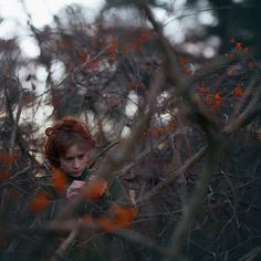 orange | Flickr - Photo Sharing! Photos by Zev, 14 years old Fiddle Oak, Flickr