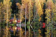 Summer cottage in autumn colours - Visit Finland Cabins In The Woods, Best Cities, Trip Planning, Planning Maps, Plan Your Trip, Where To Go, The Great Outdoors, Countryside, Cottage