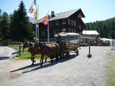 Mit der  #Pferdekutsche wie anno dazumal durch den #Wald fahren. #Urlaub www.lejdastaz.ch