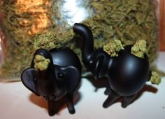 Awwwwwwwwwwwwwwwwwww!!@!@! Vaporizer Pen, Best Vaporizer, Smoking Weed, Smoking Pipes, Stone Sour, Elephant Family, Bongs, Cannabis, My Best Friend