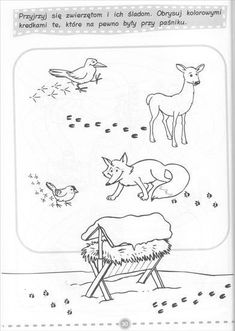 Skupiny a blogy - Všetko z blogov Feeding Birds In Winter, Adult Coloring, Coloring Pages, Pet Clinic, Animal Clinic, Animal Tracks, Preschool Kindergarten, Forest Animals, Cub Scouts