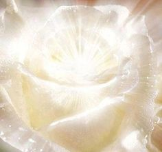 White Flame Ray, Diamond Frequency Light and Silver, Gold  Platinum Rays are realms of purity, of pure Light Consciousness, of sheer contact with One Mind [and the] One Love Consciousness, with the refreshing of the Being, with these Light Frequencies. Gold Ray Flame is Consciousness. Silver  Platinum links up with the Crystalline Light realms of Crystal Knowledge, of Crystal Beings, of Elves. The Diamond Frequency is High Vibration, is Pure Creation  --Elaya Gaia    (via:fb.dawn.morningstar...