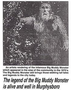 Murphysboro Mud Monster During the summer of a town by the name of Murphysboro in the southwestern part of Illinois was the location of several bizarre sightings of an unknown creature that. Creepy Catalog, Bigfoot Photos, Finding Bigfoot, Project Blue Book, Horror Tale, Bigfoot Sasquatch, Southern Illinois, Mothman, Tall Tales