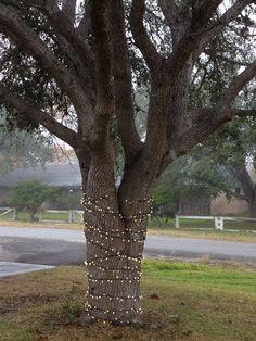 Christmas Lights Kmartholiday Outdoor Decor