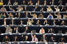 A ce jour, le Conseil de l'Europe a adopté six conventions dans le domaine vétérinaire qui établissent des normes concernant les principes éthiques à respecter dans les domaines suivants :        les transports internationaux d'animaux,      l'élevage d'animaux de rente,      l'abattage d'animaux,      l'utilisation d'animaux à des fins d'expérimentales ou à d'autres fins scientifiques,     la protection des animaux de compagnie.
