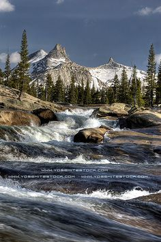 Tuolumne River, Yosemite by Chris Falkenstein Photography & Video, via Flickr
