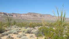 4.51 acres in #Yucca #Arizona ONLY  $14,950 water and electric to the property adjacent 4.5 acres available across from BLM land 30 min to Lake Havasu City or Kingman