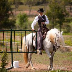 Stallion Camargue Tarkun of Arahc - Breeding Arahc - Beaucaire