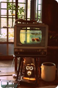 This is a fantastic idea. I totally want a fish tank inside my tv. :)