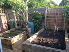 best material raised bed vegetable | Ross's raised vegetable beds with new pine railway sleepers - trellis on back.