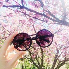 Hermosas Óculos Ray Ban, Óculos De Sol Feminino, Óculos Feminino, Oculos De  Sol 9558dd83b9