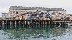 StreetArtNews | ROA New Mural In Vardø, Norway