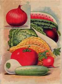 another new catalog with great art in its catalog - haven't ordered but it is untreated crunchy granola seed, may give them a try.