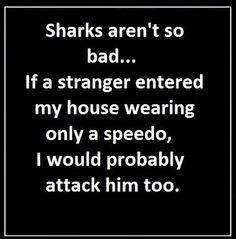 Sharks aren't so bad.