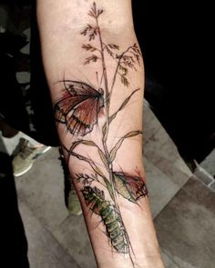 Catterpillar And Butterfly Tattoo by Ewa Sroka Arm Tattoos, Cool Tattoos, Tatoos, Watercolor Butterfly Tattoo, Botanical Tattoo, Tattoos For Guys, Ink, Eastern Europe, Tattoo Ideas