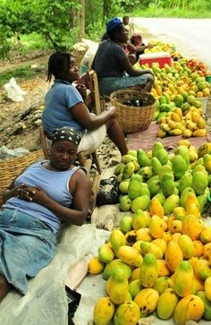 Somedays you gotta embrace the inner Jamaican market woman when people step out of line.... Sweet Jamaica. There are over 20 different types of mangoes in Jamaica.