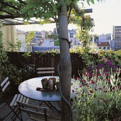 Roof top terrace: Tis is so cute! it looks like a country garden but by the view behind I think it is a roof terrace.