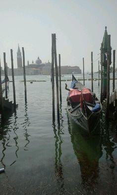 Venezia 2014