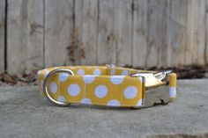 Polka Dot Dog Collar Yellow and White Polka Dot by SitStayStitch