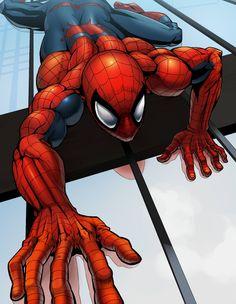 Spider On The Wall •鳥男@ジュプトル
