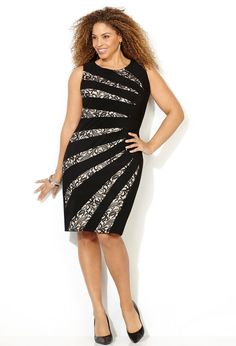 Black and Beige Lace Inset Sheath Dress