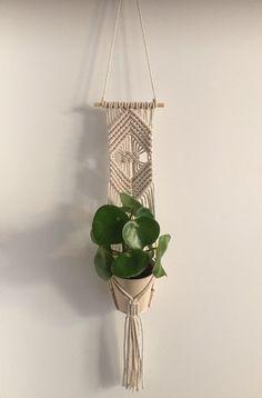 Macrame plantenhanger muurdecoratie wall hanging green wall
