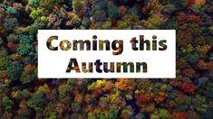 Nottingham Courses Autumn 2019 Training Courses, Birmingham, Liverpool, Manchester, Autumn, Nottingham, Durham, Camera Phone, Bristol