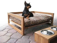Modern wood raised dog bed made from Plyboo bamboo plywood. Plyboo is a sustainable building material distributed by Intectural. Raised Dog Beds, Bamboo Plywood, Dog House Plans, Diy Dog Bed, Dog Rooms, Cat Room, Dog Feeder, Pet Furniture, Pet Beds