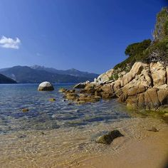 Bellissima la spiaggia del #forno a #portoferraio nello scatto di Milela Brembilla. Continuate a taggare le vostre foto con #isoladelbaapp il tag delle vostre vacanze all'#isoladelba. Visita il sito http://ift.tt/1NHxzN3