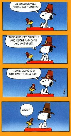 There's always something to be grateful for. Happy Thanksgiving!