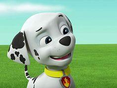 Los Paw Patrol, Paw Patrol Pups, Paw Patrol Marshall, Kids Cartoon Characters, Cartoon Kids, Cloverfield 2, Puppies, Cute, Anime
