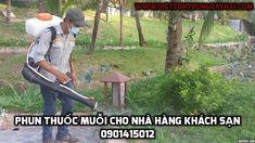 Dịch vụ phun thuốc diệt muỗi và côn trùng (ruồi, gián, kiến, mối) cho nhà hàng khách sạn giá rẻ. LH: 0901415012