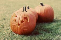 acc67e1c59 A(z) HALLOWEEN NAILS nevű tábla 36 legjobb képe | Halloween Nails ...