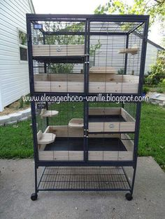 Hi lovelies, could anybody point me in the direction of where I can get some wooden scatter guards for a critter nation cage . Cage Chinchilla, Chinchilla Care, Ferret Cage, Ferret Nation Cage, Pet Rat Cages, Cat Cages, Rabbit Cages, Chinchillas, Hamsters