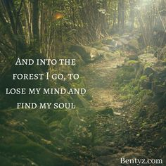 And into the forest I go, to lose my mind and find my soul Photo Finder, Creative Writing Prompts, Good Morning Gif, Life Thoughts, Deep Thoughts, Lose My Mind, Spiritual Gangster, Interesting Quotes, Positive Mind