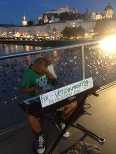 ...für sein Lieblingspfertal ;-) Salzburg, Concert, City, Concerts