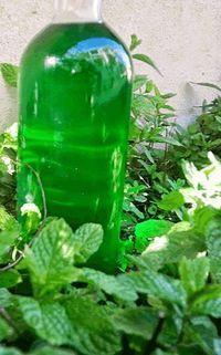 Ένα γλυκό ποτό που μπορεί να κλείσει όμορφα ένα πολύ λιπαρό γεύμα…και όχι μόνο.. Απόγευμα μέσα στο τσάι..σε κοκτέιλ τις καλοκαιρινές καυτές νύχτες…φάρμακο για το μπούκωμα…στη βαρυχειμωνιά Λικέρ παντός καιρού!!! Ένα λικεράκι Δυόσμου δεν πρέπει να λείπει ποτέ… από κανένα σπίτι!! Χαϊδευτικά θα το λέμε Απάτσι..όπως τα ελικόπτερα Απάτσι που είναι παντός καιρού!! Υλικά The Kitchen Food Network, Homemade Alcohol, Chocolate Fudge Frosting, Fruit Preserves, Oreo Pops, Eat The Rainbow, Liqueur, Food Places, Smoothie Drinks