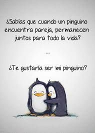 Frases Cortas De Amor Tumblr Infovisual