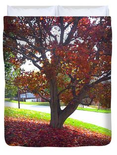 Fall Foliage Carpet Photo-Painting X L Duvet Cover by Shelly Weingart